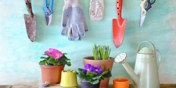 Najlepsze narzędzia ogrodnicze dla entuzjastów kwiatów i roślin