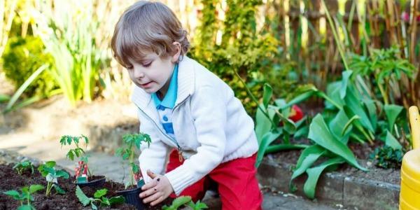 5 prostych sposobów, aby zachęcić dzieci do ogrodnictwa, część 2.