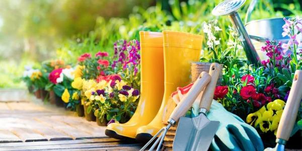 10 ważnych narzędzi, które powinny znaleźć się u wszystkich ogrodników